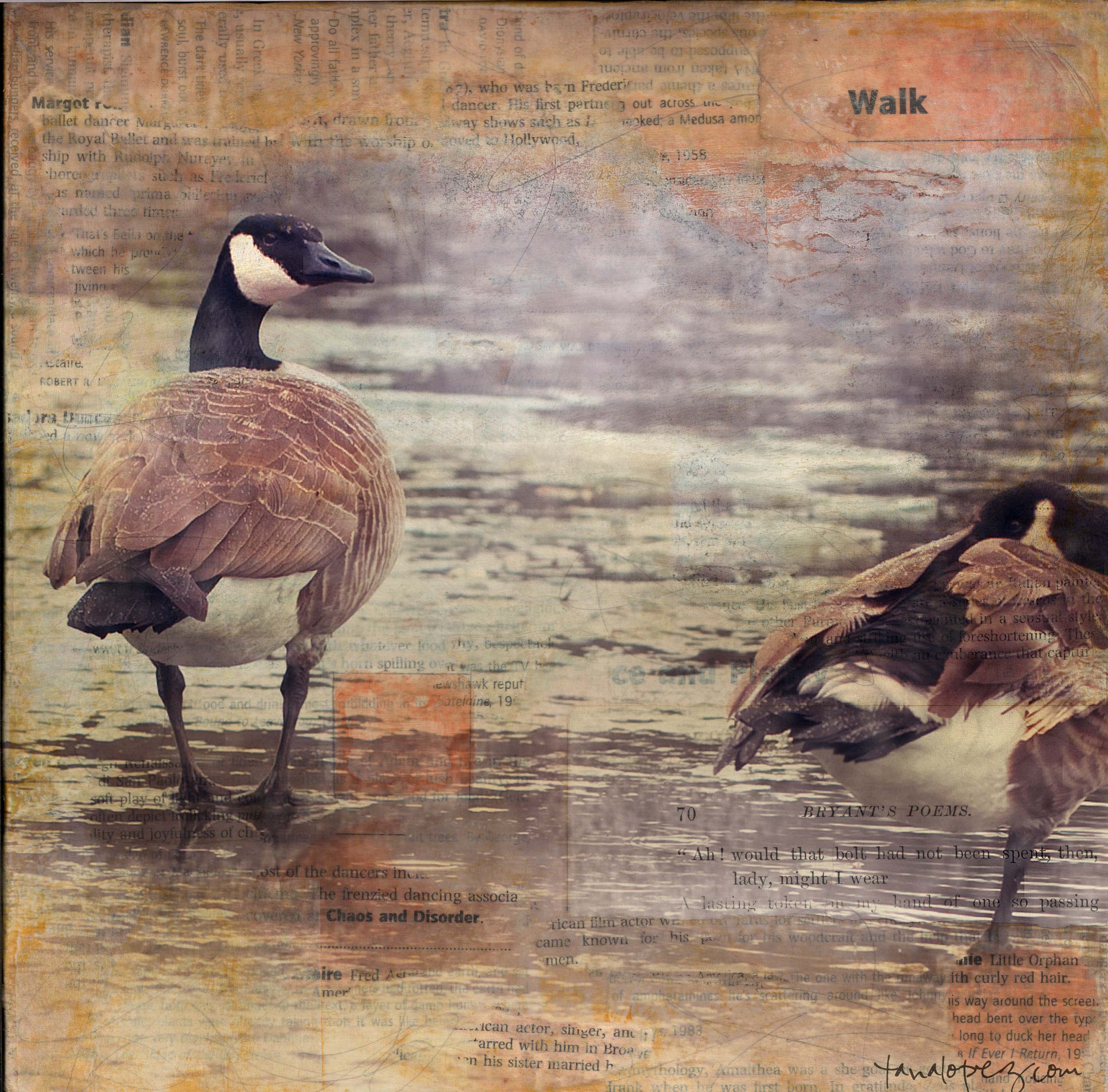 geese art tana lopez younger